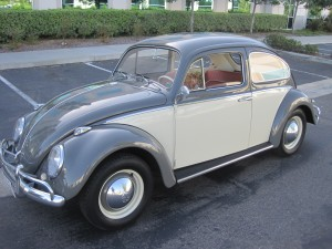 '64 VW Bug: Left Side